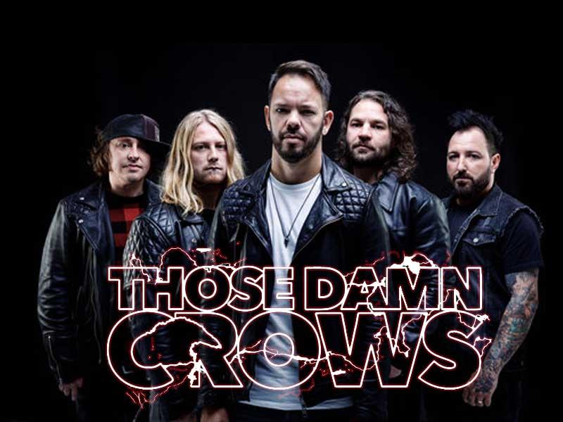 icepick – those damn crows