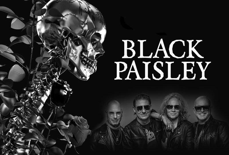 Black Paisley